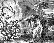 The man who sought Grace
